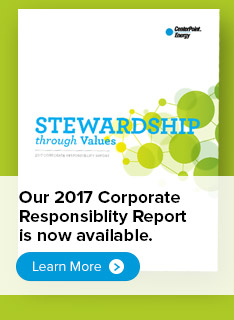 2017 Corporate Responsibility Report